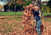 Dlaczego warto spędzać czas z dzieckiem na świeżym powietrzu
