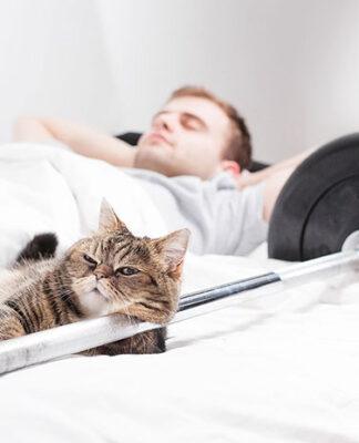 Świat poduszek do spania